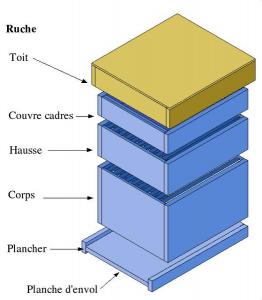 plan ruche
