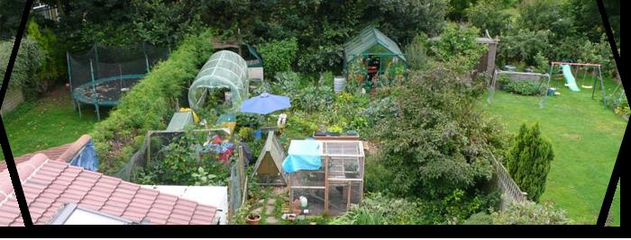 La permaculture : une méthode respectueuse des écosystèmes